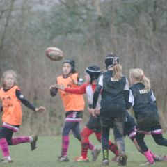 U11s v Market Harborough