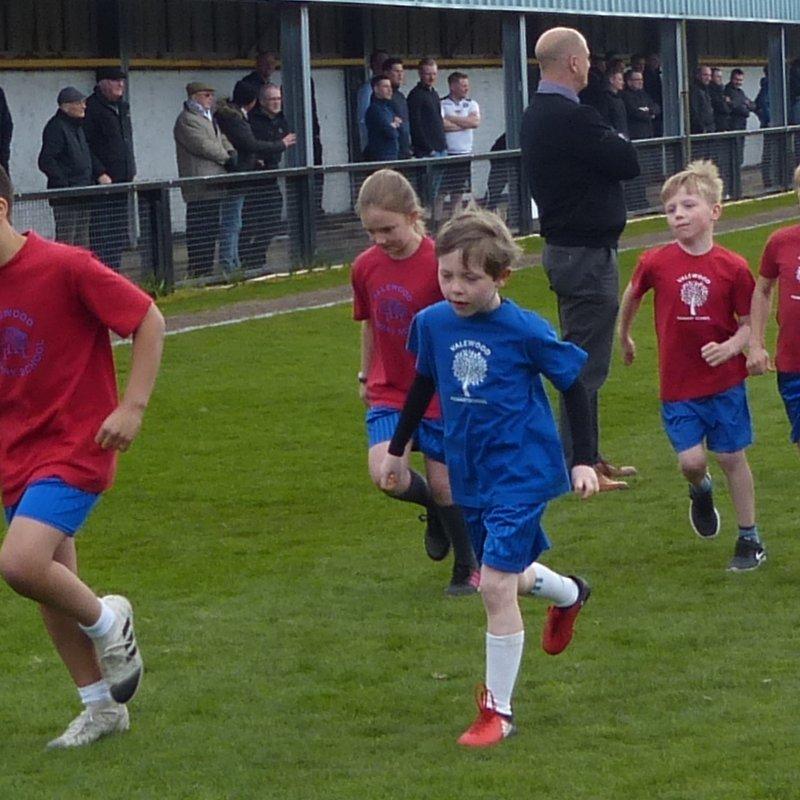 Valewood Primary School Match Mascots