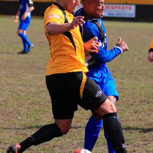 Battling Robins Draw Without Lynch-Pin