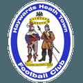 Haywards Heath Town FC