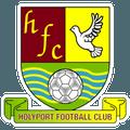 Holyport Football Club