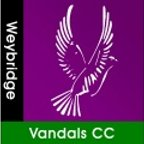 Weybridge Vandals Cricket Club