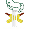 Winsley Cricket Club