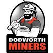 Dodworth Miners ARLFC