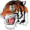 Theale Tigers