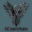 FC Harnham