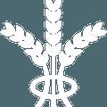 Ruislip Rugby Club