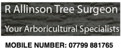 R Allinson Tree Surgeon