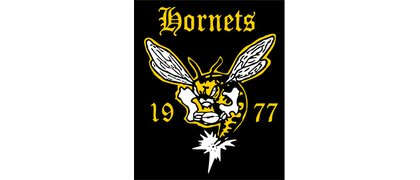 St. Louis Hornets Rugby Club
