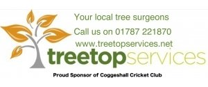 Treetop Services