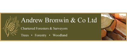 Andrew Bronwin  & Co Ltd