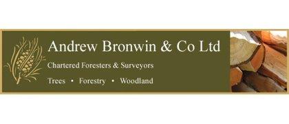 Andrew Bronwin  & Co Ltd