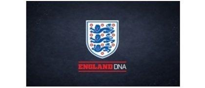 The FA DNA
