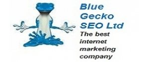 Blue Gecko SEO Ltd