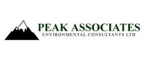Peak Associates
