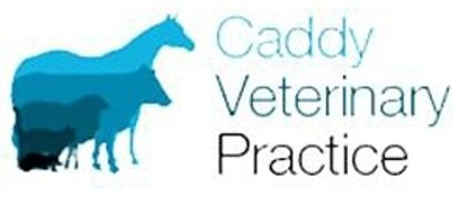 Caddy Veterinary Practice