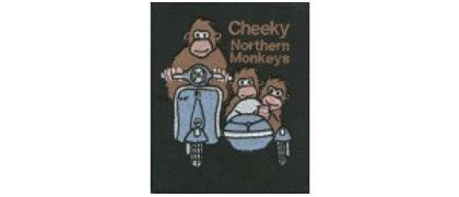 Cheeky Northern Monkeys