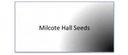 Milcote Hall Seeds