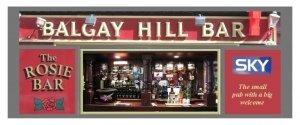 The Balgay Hill Bar