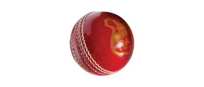 1st & 2nd XI Ball Sponsorship