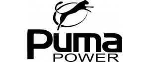 Puma Generator Servicing