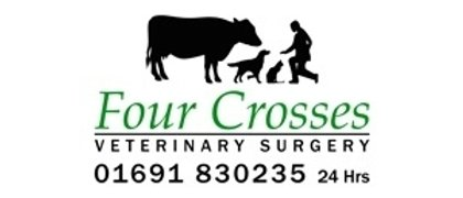 Four Crosses Veterinary Surgery