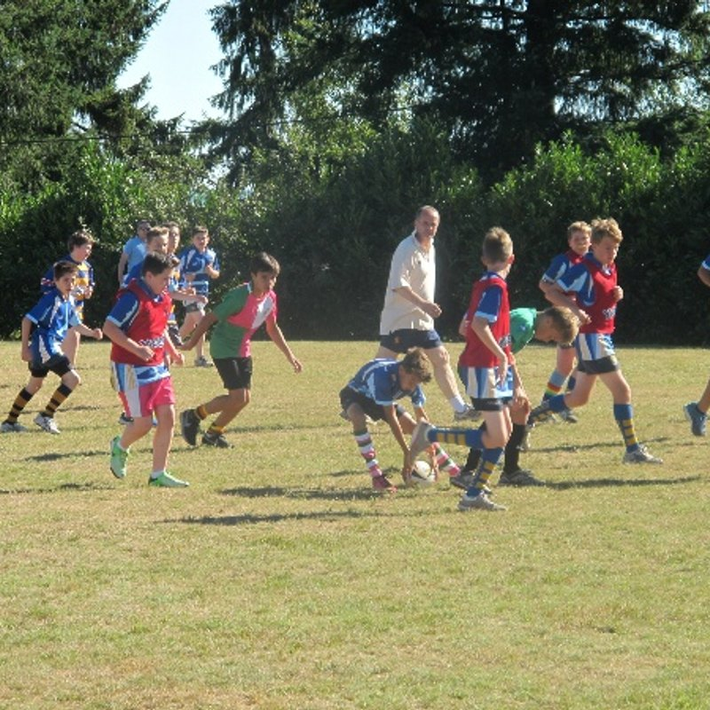 Youth Rugby - Summer Touch 2019 - Every Weds from 7.00  at Eltham College