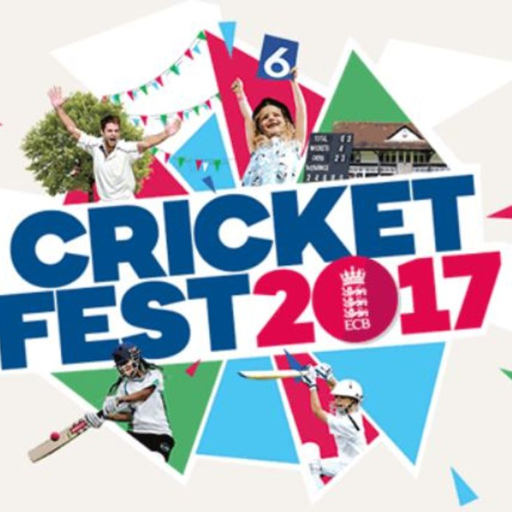 Teams needed for &#039;Cricketfest&#039; Holywell Sixes tournament!<
