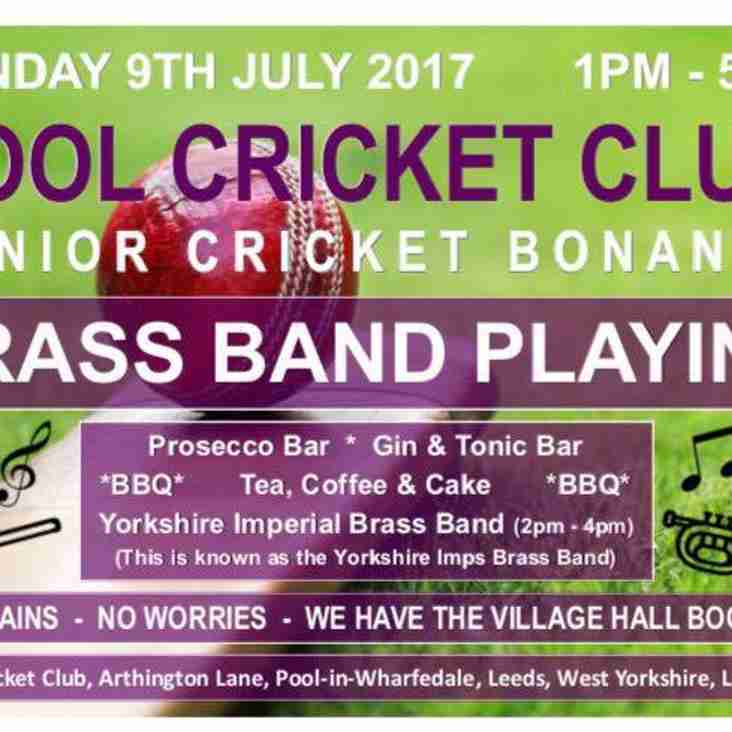Junior Cricket Bonanza  - Sunday 9th July from 1pm onwards