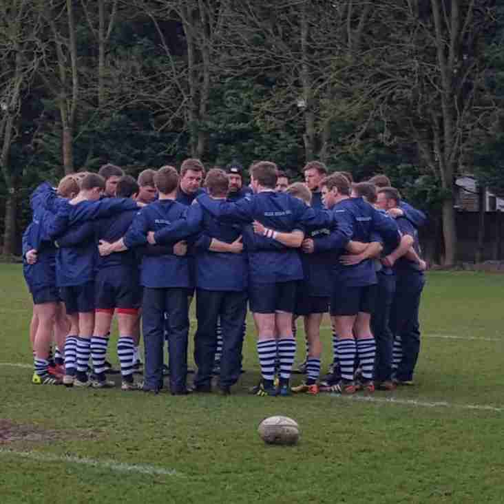 Whippets Win Oxfordshire Shield 2017