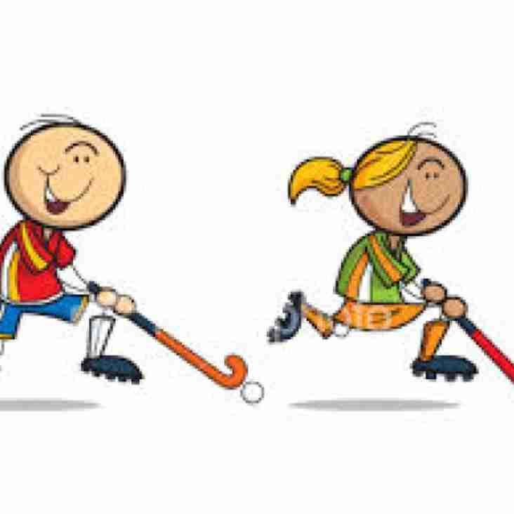 Sunday Junior Hockey 2019/2020