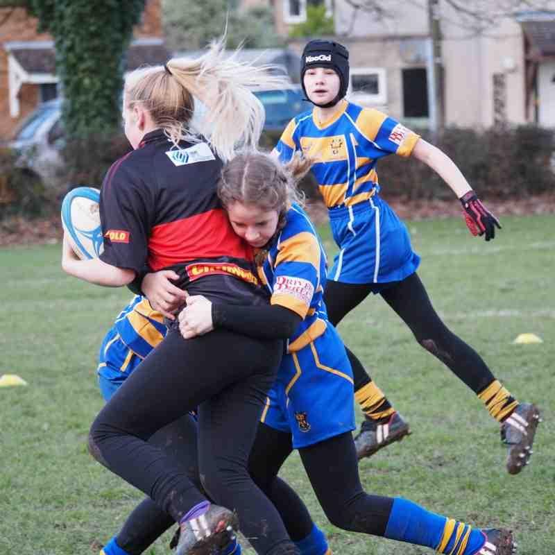 Clevedon RFC U13 girls 15th January 2017