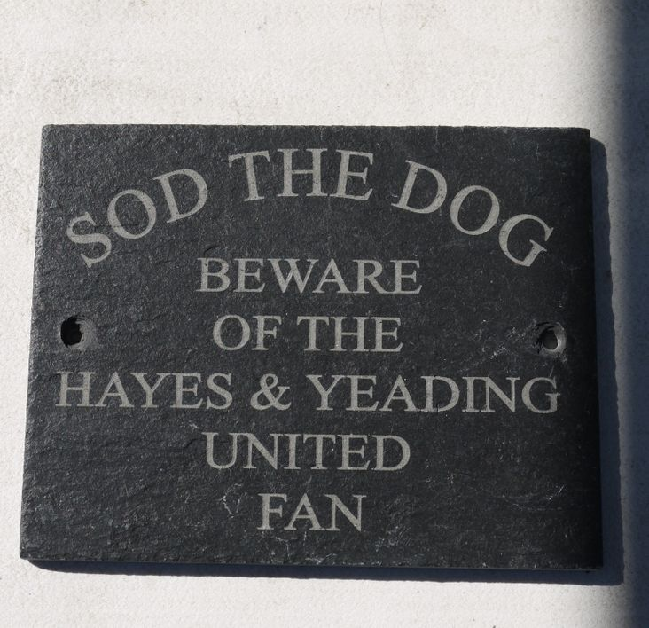 'Sod the Dog!'
