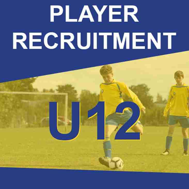 U12s - Player Recruitment