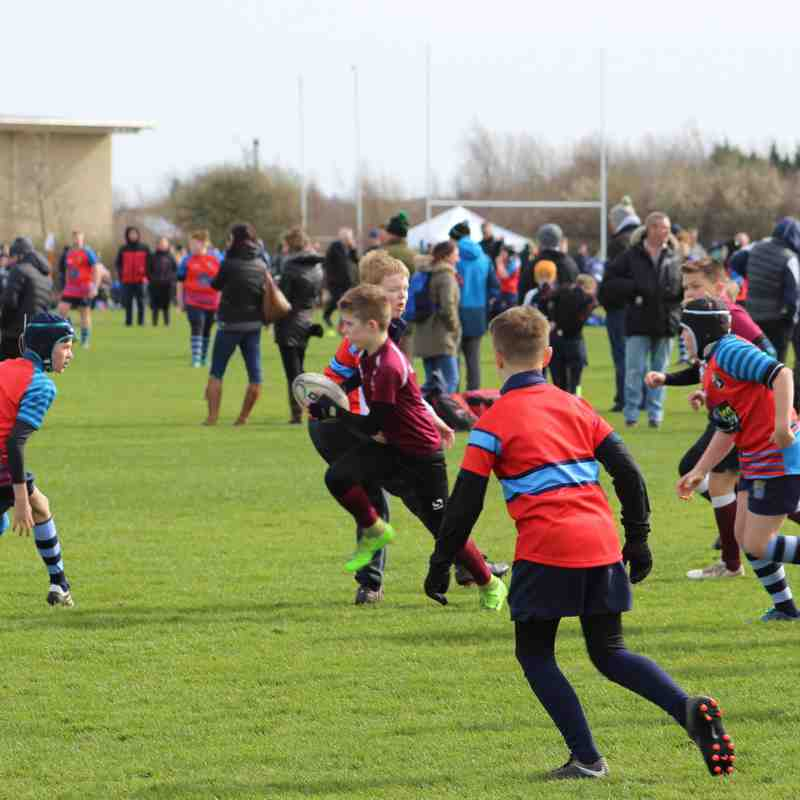 U11's Landrover Cup at Newcastle Falcons