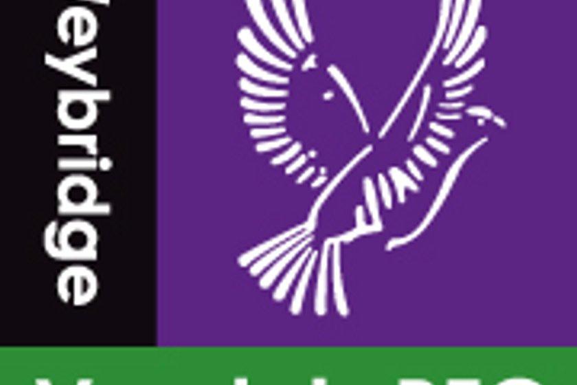 Reminder - Weybridge Vandals RFC - AGM 2019