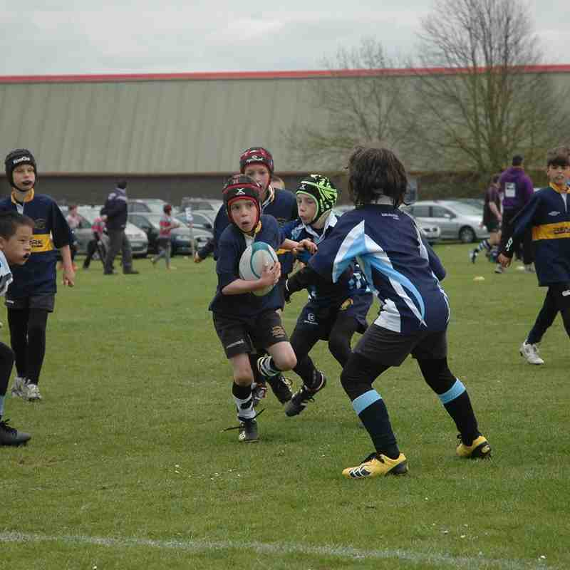 Under 9's  Stamford Rugby Festival