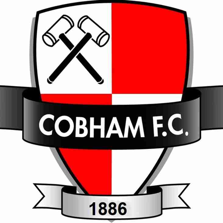 Cobham Football Club U8's (to be U9s) Now Recruiting for 19-20 season