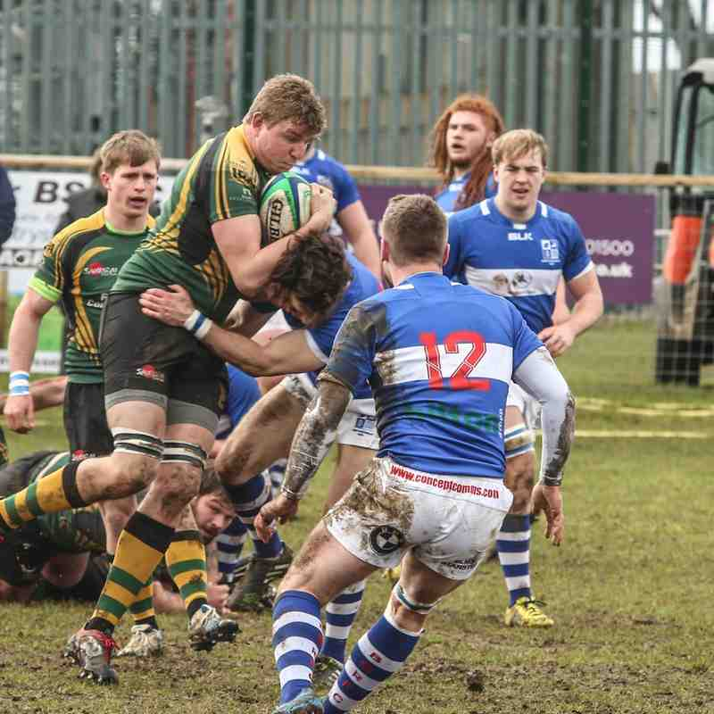 Bishop's Stortford v Wolfhounds