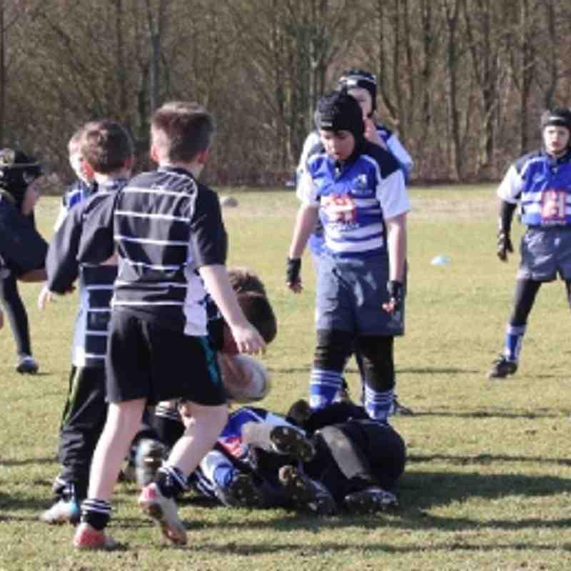 Under 10's. Season 2011-12