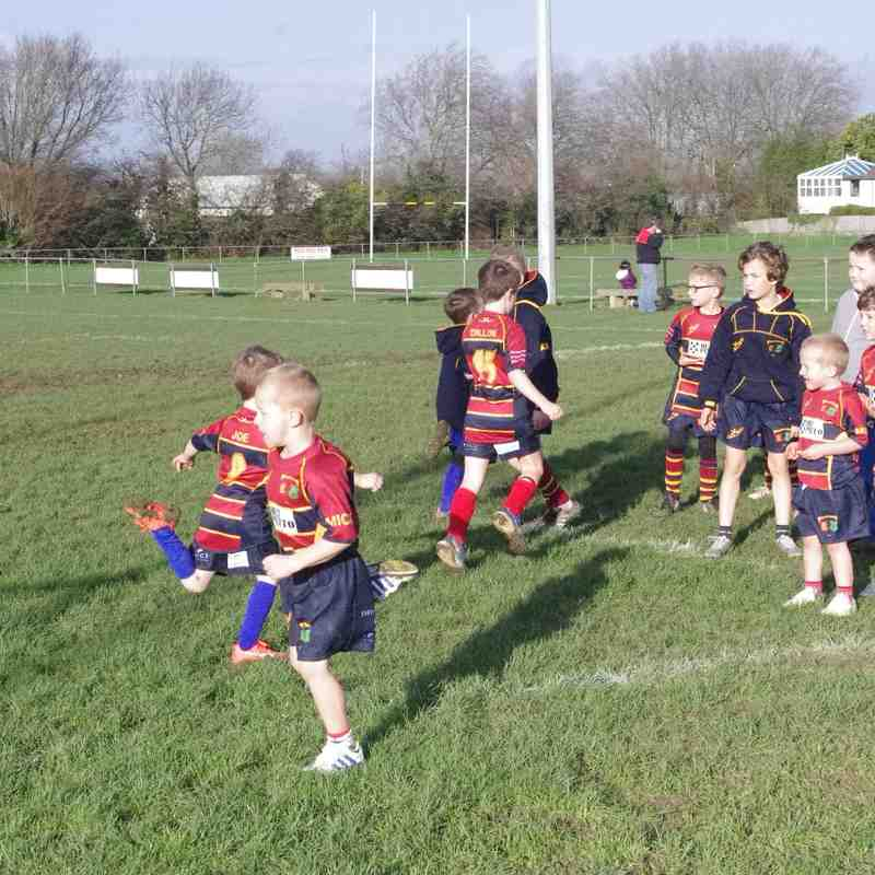 Mini Rugby Squad Training on New Kit - 20th Dec, 2015