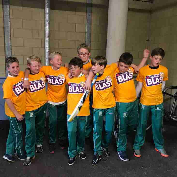 Junior Hardball Training Starts on Friday (26th April)  6pm.