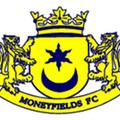 Moneyfields Football Club Ownership