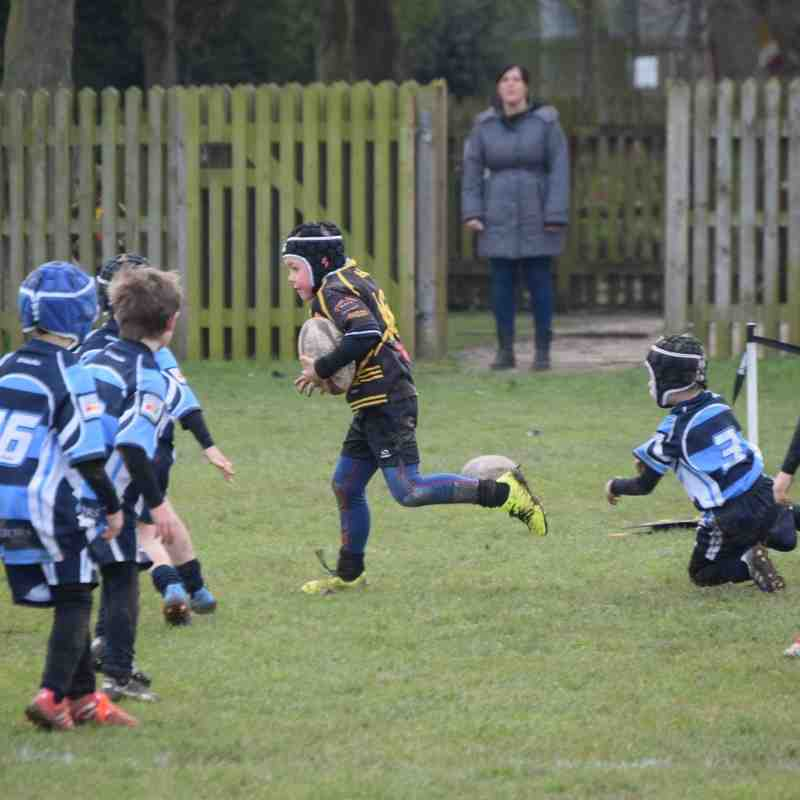 Chester Gladiators U7s v Ashton Bears