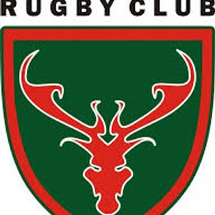 DRUFC 1st XV vs Chesterfield Panthers 1st XV