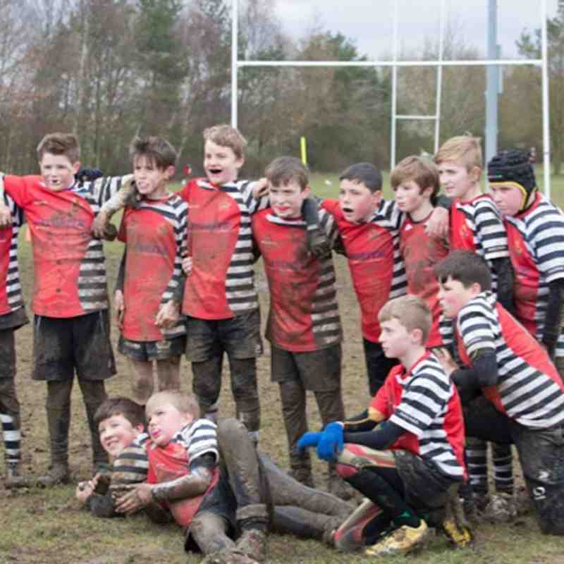 U12s v Stowmarket & Diss - 6th March 2016