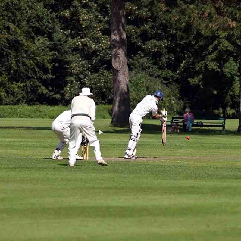 Ashtead Sunday v Frogs