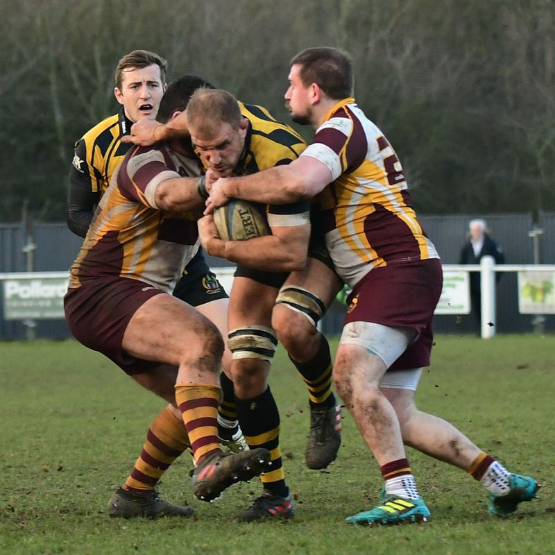 Hornets taste defeat at home for first time