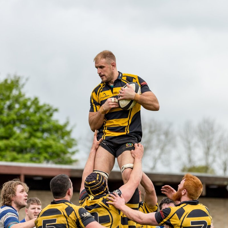 Hornets close with a last gasp draw