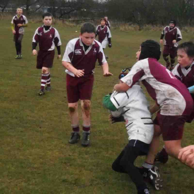 Unde 11's V Grasshoppers / Sedgley Park 14th April 2013